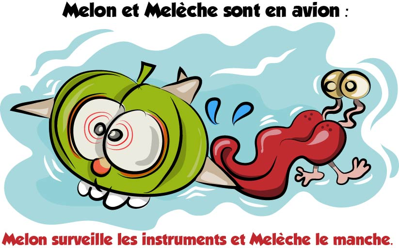 blague melon et meleche avion
